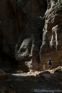 The Narrows Hiker