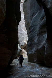 The Narrows Slot Canyon