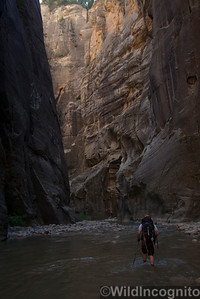 Hiking in the River of The Narrows