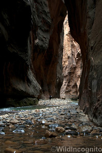 Hiker in The Narrows Zion National Park