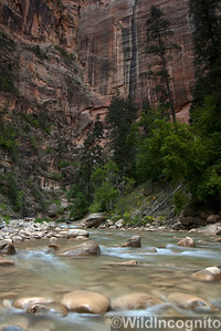 The Narrows Virgin River and Walls