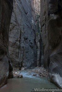 The Narrows Canyoneer