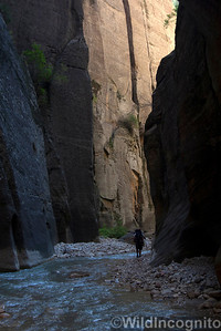 The Narrows Hiker and Walls