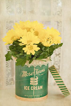 Moser Farms Dairy