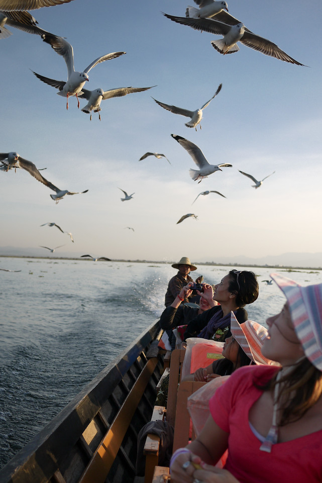 We feed seagulls chasing our boat on Inle Lake, Burma (Myanmar).