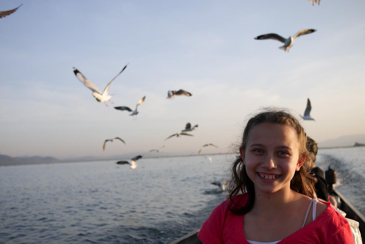 Seagulls and boats on Inle Lake, Burma (Myanmar).