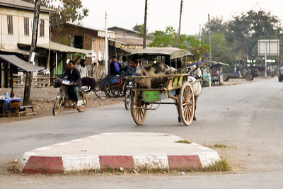 A horse-drawn cart with a pig in the back makes it way toward Nyaung Shwe on Inle Lake from the bus stop in Shwenyaung, Burma.