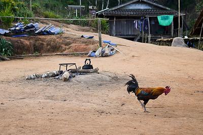 Maejantai village outside of Chiang Rai, Thailand.