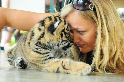 Dani and the baby tiger I decided to name Simba looking deeply into each others blue eyes.