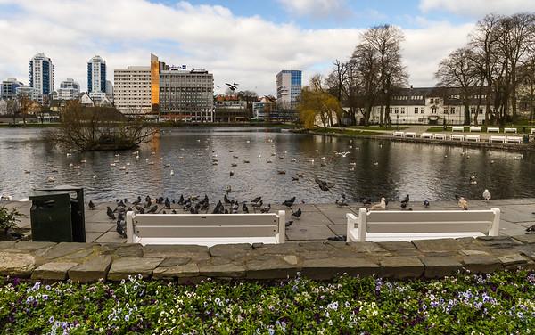 Våren nærmer seg; Byparken Stavanger