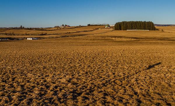 Årken på Jæren - Brunsvidd mark