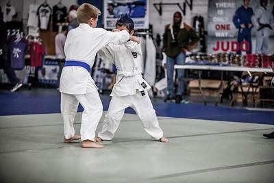 Irwin Cohen Memorial Judo Tournament 2016 (44)