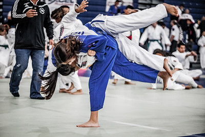 Irwin Cohen Memorial Judo Tournament 2016 (20)