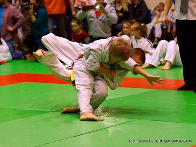 Judo Malopolska Children Cup Cracow november 2015