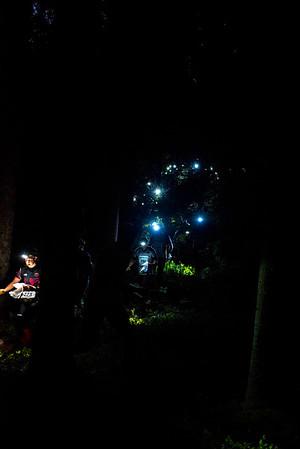 Suunnistajat valaisivat metsän. Kuva: Pirjo Valjanen