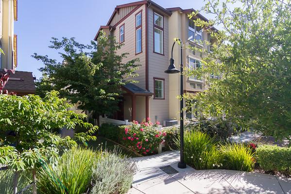 211 Peppermint Tree Terrace #1 Sunnyvale, CA 94086