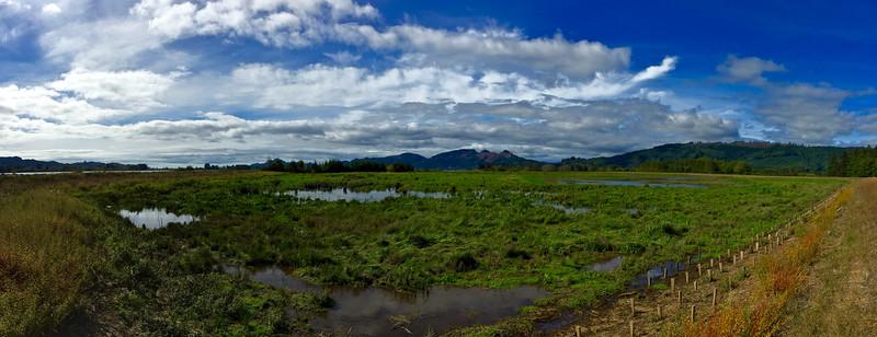 Vast Expanse of the Lower Columbia Region
