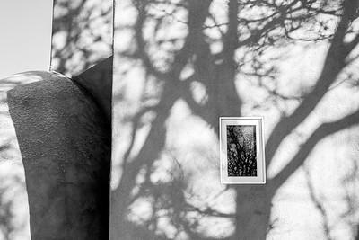 Shadow Reflection