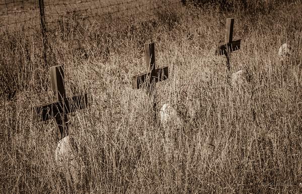 Las Cruces - The Crosses