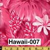 Hawaii-007
