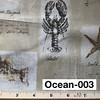 Ocean-003
