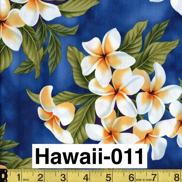 Hawaii-011