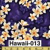 Hawaii-013