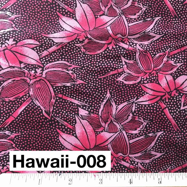 Hawaii-008