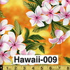 Hawaii-009
