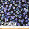 Maine-002