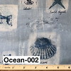 Ocean-002