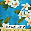 Hawaii-012