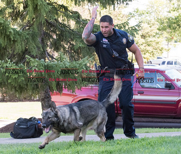 072816  Wesley Bunnell | Staff  New Britain Police Ofc. Ray Ouellette gives his command to Pup to find evidence thrown into the grass during a demonstration. Ofc. Ouellette and Pup recently placed second in the state's police canine competition.