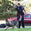 072816  Wesley Bunnell | Staff<br /> <br /> New Britain Police Ofc. Ray Ouellette gives his command to Pup to find evidence thrown into the grass during a demonstration. Ofc. Ouellette and Pup recently placed second in the state's police canine competition.