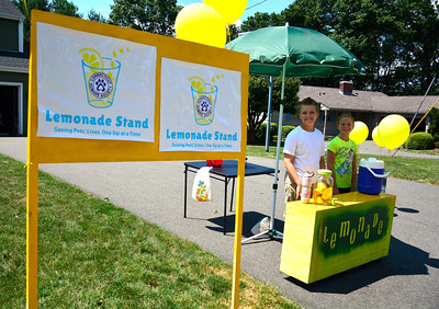 7/23/2016 Mike Orazzi | Staff Kayden Suchocki and his sister Mave Gunning while selling lemonade to raise money for the Connecticut Humane Society in Newington Saturday.