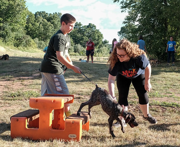063016  Wesley Bunnell | Staff  Kindergarten Puppy Training Class was held on June 30 at Pistol Creek Golf Course in Berlin.  Tyler Degroff of Berlin gets a handle on 3 1/2 month old Sadie , a German Short Hair Pointer, as she completes the obstacle course.