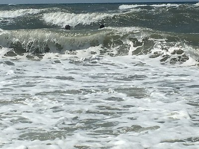 No waves too big!