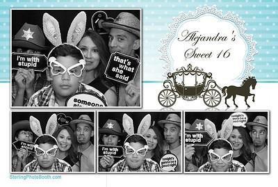 Alejandra's Sweet 16