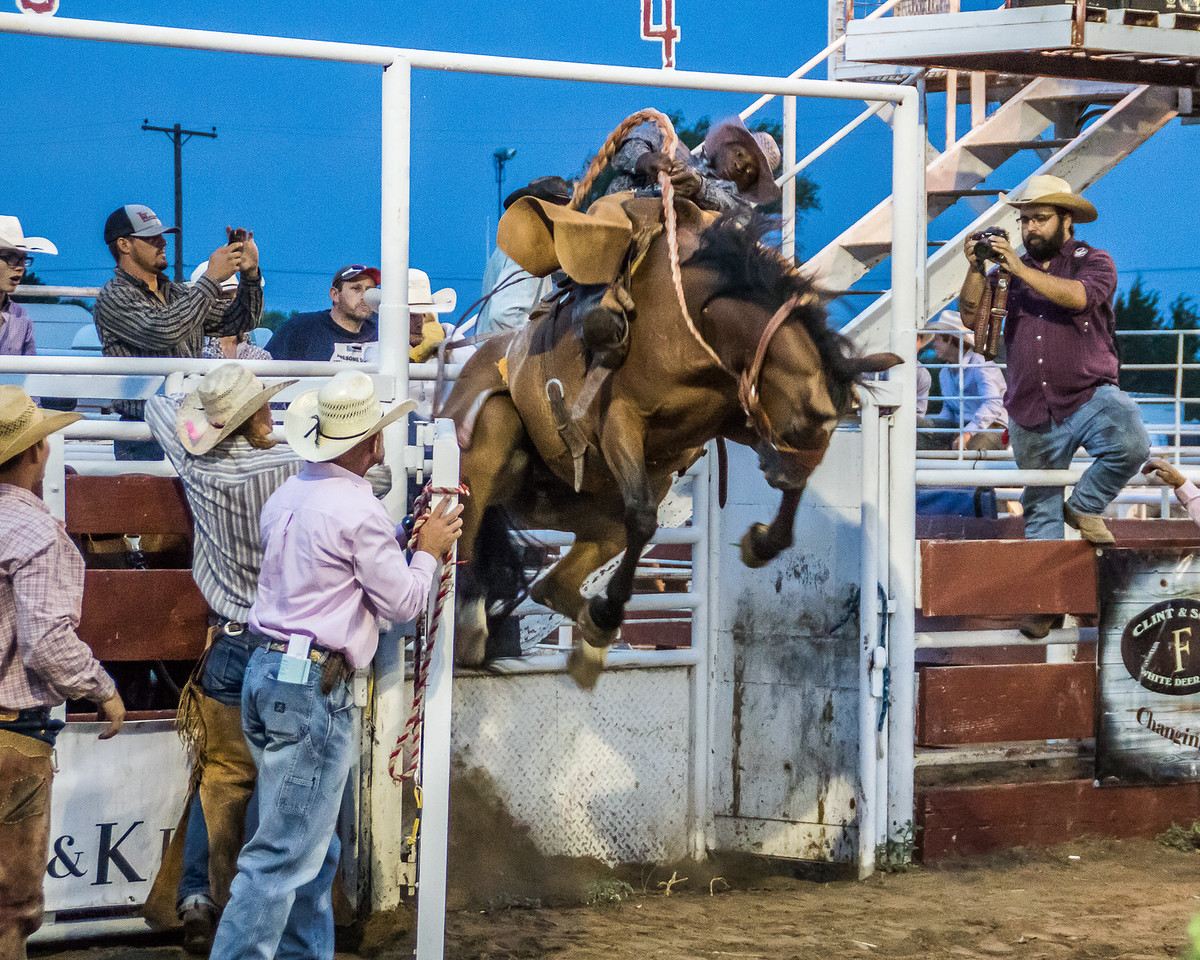 Bursting out of the chute, White Deer, Texas Rodeo.  #rodeo #action #texas #canon