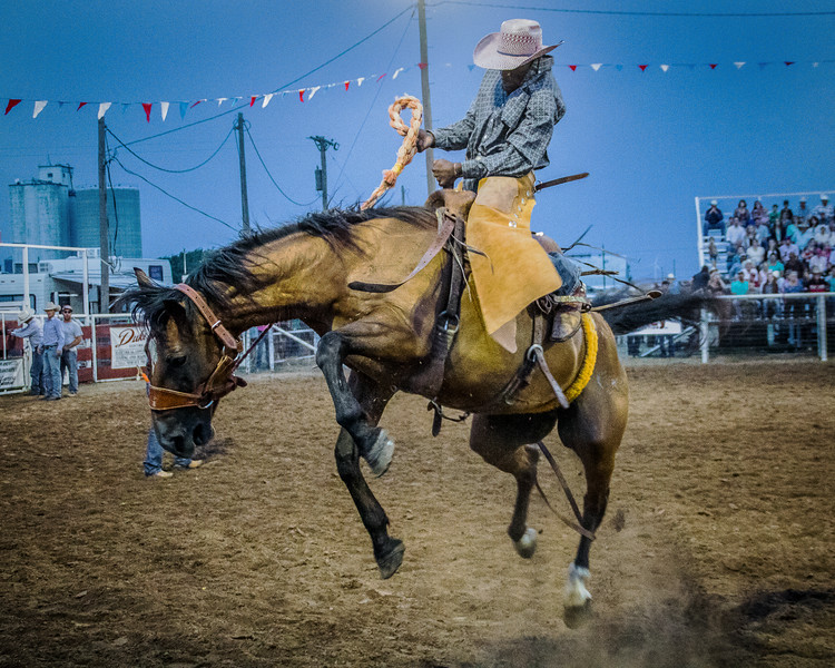 Bucking Bronc, ride of the night, White Deer Texas Rodeo. #rodeo #action #texas