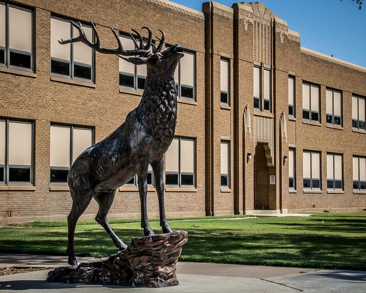 The Stratford Elk