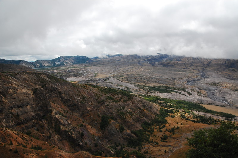 View of the base of Mt St Helens.  It was too foggy to see much higher up the mountain.