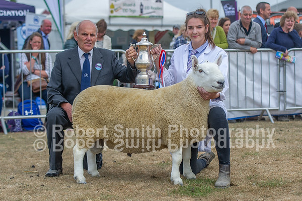 Great Yorkshire Show 2018