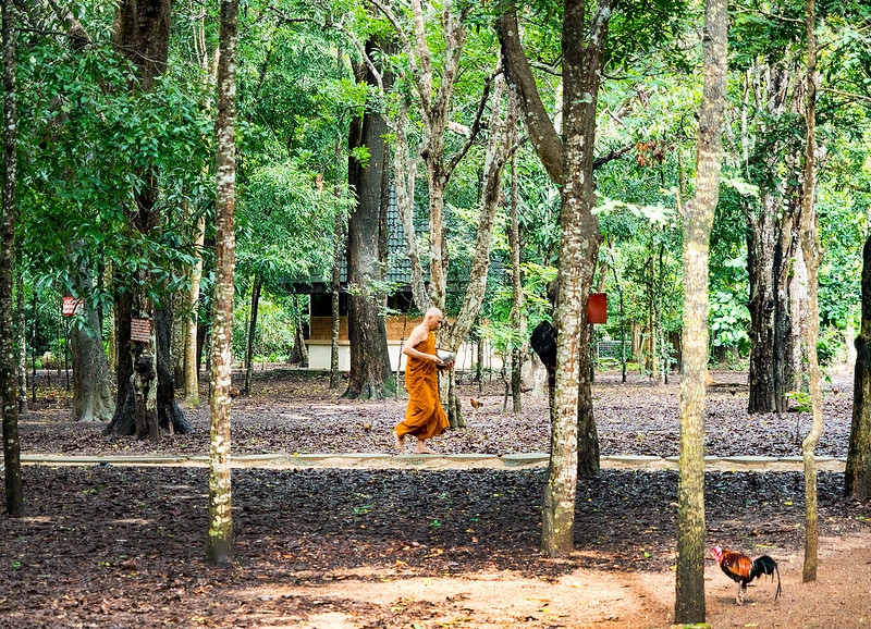 wood monk