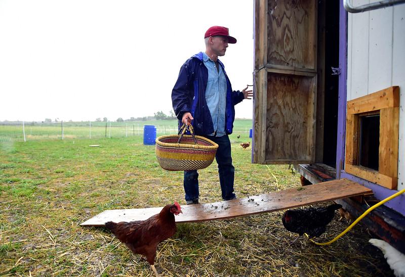 McCauley Farms