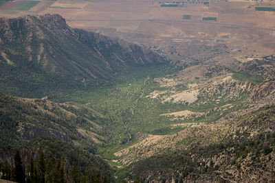 Willow Creek Canyon (left fork)