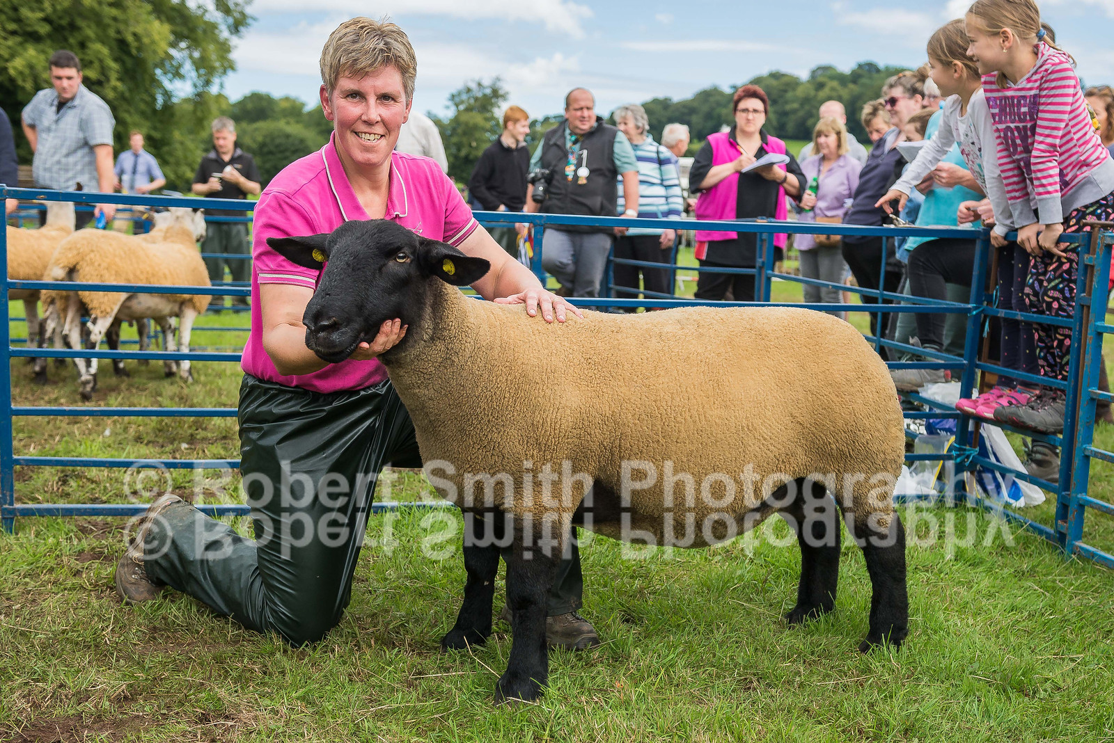 Champion of champions interbreed sheep - suffolk gimmer from AW and BT Taylor