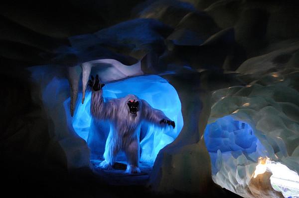Trip to Disneyland 2012