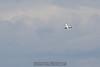 2012-08-11_skydive_cpi_0464