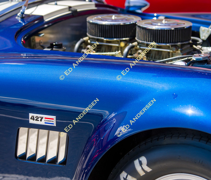 Sunlight reflects off a 427 cubic inch 1965 Shelby Cobra owned by Ken and Pam Abbott.